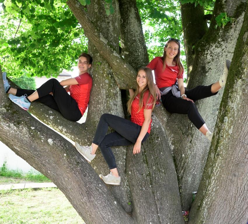 Läuferinnen ab auf die Bäume